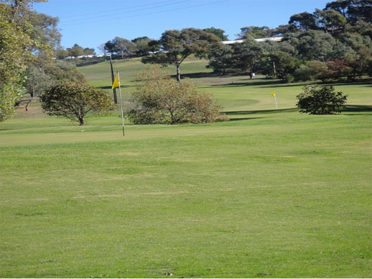 Mt Pleasant & District Golf – Club, Course – Mt Pleasant Golf And Country Club - Mt Pleasant Golf  - Club, Course - SA