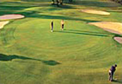 Berri Golf And Country Club – Berri Golf Club – Accommodation, Adelaide, SA, AU - Berri Golf Course – Motel – South Australia