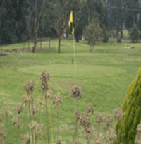 Berwick Par 3 Pitch'n'Putt Course – Berwick Golf – Course Map, Club, Park – VIC Australia