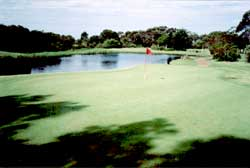 Boomerang Golf Club – NSW – Boomerang Golf – Review, Tour – Boomerang Golf Course - Gold Coast