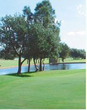 Botany Golf Club – Banksmeadow, Restaurant, Sydney, Fees, Review, Pro Shop – Botany Golf – Driving Range, Course – NSW, Australia