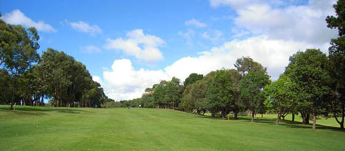 Cammeray Golf Club – Review, Green Fees, Map, Restaurant, Dress Code, NSW, AU - Cammeray Golf Course – Sydney, NSW