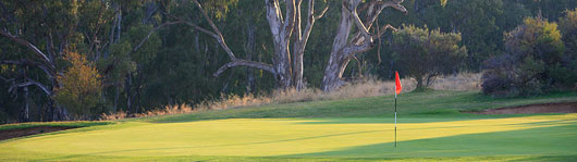 Cobram Barooga Golf Club – Pro Shop, Resort, Packages, Rating, Reviews, Motel, Victoria, AU – Cobram Golf – Course, Club
