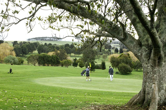 Coolangatta Estate – Restaurant, Reviews, Wedding, Cottages – Coolangatta Golf Club, Course – NSW, Australia