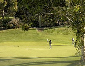 Cypress Lakes Country Club – Cypress Lakes Golf Course – Cypress Lakes Golf Club NSW – Australia