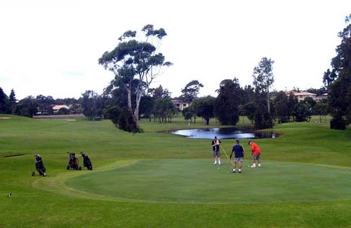 Emerald Downs Golf Course – Membership, Green Fees - Emerald Downs Golf Club – Review, NSW - Australia