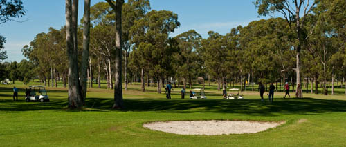 Fairfield Golf Club – NSW, Australia – Fairfield Golf – Center, Course – Fairfield Golf And Country Club