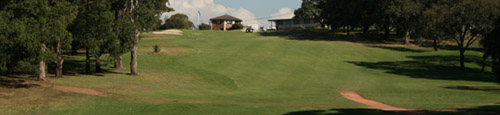 New Brighton Golf Club – Sydney, Restaurant, Review, Development, Map, NSW, Australia  – Brighton Golf – Course, Academy