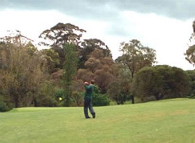 Wattle Park Golf Course – Scorecard, Address, Phone Number, Melbourne, Surrey Hills, Victoria – Wattle Park Golf Club – VIC, Australia