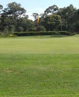 Bendigo Golf Club – Fees, Pro Shop, Layout, Tournament, Dress Code, Victoria, Australia – Bendigo Golf – Courses,  Driving Range, shop, Association – VIC, Australia