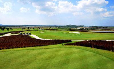 Golf Paradise - Terrey Hills, Driving Range – Golf Paradise Course – NSW, Australia