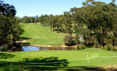 Mangrove Mountain Memorial Club – Golf Course - Mangrove Golf – Course, Club – NSW, Australia