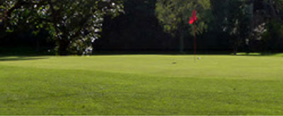 Marrickville Golf Club - Membership – NSW - Marrickville Golf Course - Marrickville Golf Sporting And Community Club - Australia