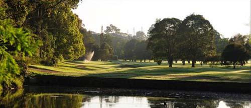 Nowra Golf Club – NSW, Pro Shop, Weddings, Australia – Nowra Golf – Course, Resort, Driving Range – NSW