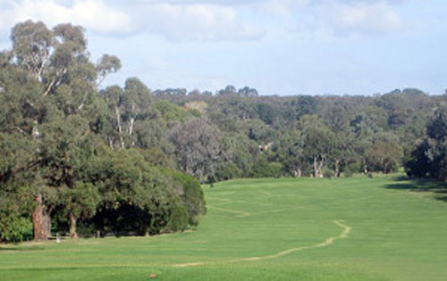 Ringwood Golf Course – Map, Pro Shop, Green Fees, Layout, Lessons, Melbourne – Ringwood Golf Driving Range, Club - VIC – Australia