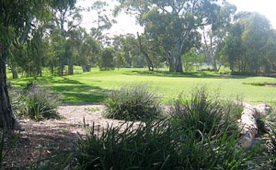 Salisbury Green Par 3 – Driving Range, Golf Course – Salisbury Golf – Centre, Club, Driving Range, Academy, Shop, Range – Salisbury Green Golf Course